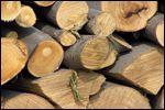 Praca z drewnem bukowym.
