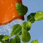 Zdrowe i energooszczędne materiały budowlane