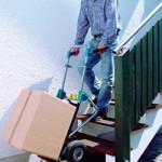 Wózki transportowe Wolfcraft – bezpieczny i wygodny transport